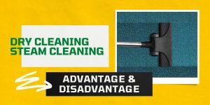 carpet cleaning dry and steam cleaning